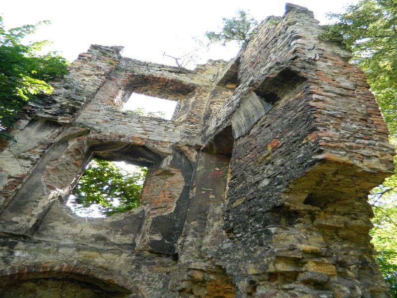 Fot. 15. Ruiny zamku w Otmęcie (zdj. T. Ślęzak) (Custom).jpeg
