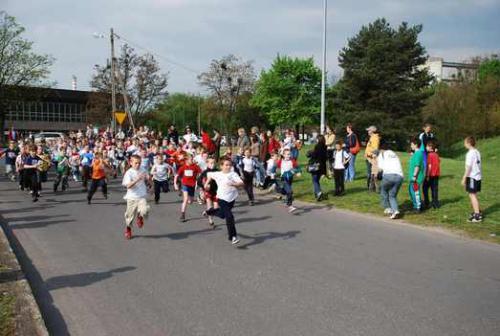 Galeria Krapkowickie Biegi Dzieci i Młodzieży - 1 maja 2008
